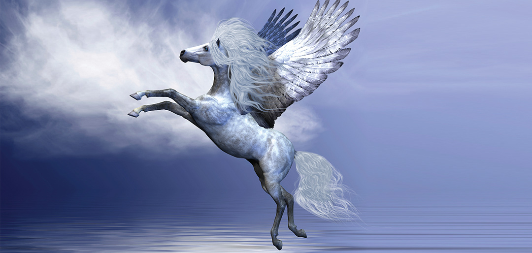 Spirit of Pegasus Animal Healing by Sue Brook
